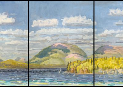 Cloud Shadows on Acadia, Early June, oil on canvas,