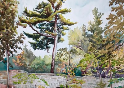 *SOLD* Hadlock Brook Tree, watercolor on paper, 51.5 x 36""