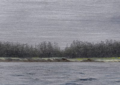"""Trees on the shore, graphite and oil on aluminum, 3x5"""""""