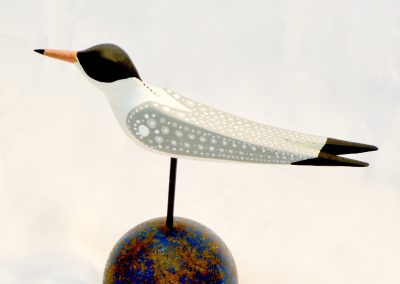 David Sears, Maine Art, bird carving, tern