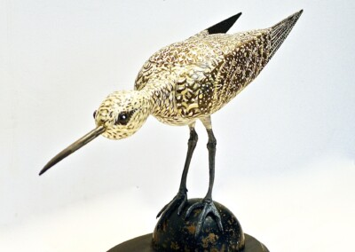 David Sears, Maine Art, bird carving, contemporary sculpture, willet, shorebird