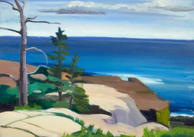 Mary prince, maine, art, artist, contemporary, painting, late summer schoodic point, acadia national park