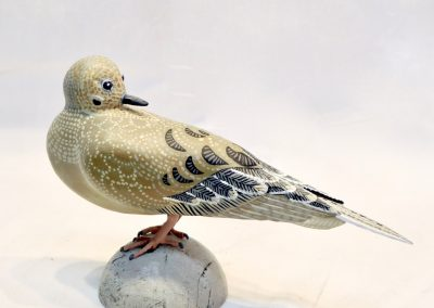 David Sears, Maine Art, bird carving, mourning dove sculpture, mourning dove carving