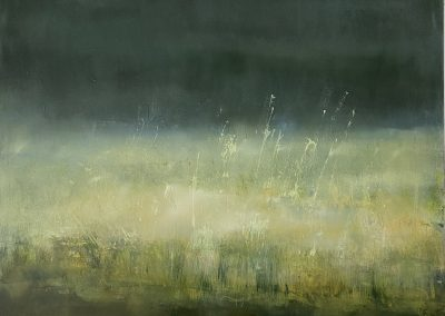 Maggie Hunt, Maine artist, Maine art, abstract, ethereal, abstract landscape, night grass