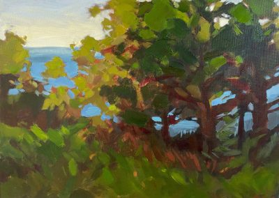 anne holt, maine art, maine landscape, fine art, ledge, trees, ocean view