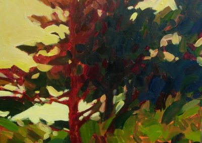 anne holt, maine art, maine landscape, fine art, red tree
