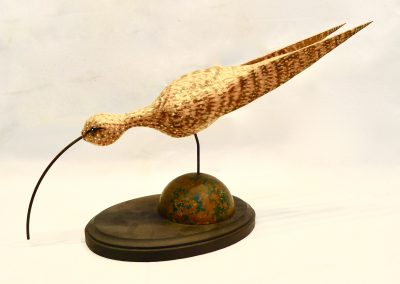 David Sears, Maine Art, bird carving, contemporary sculpture, shorebird feeding